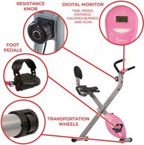 Sunny Health & Fitness Folding Recumbent Exercise Bike